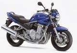 Naked Suzuki Bandit 600